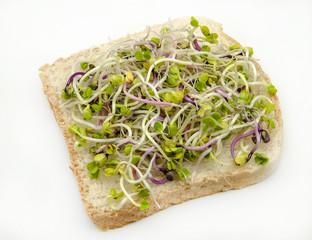 Pan con germinados de rabanitos