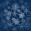 Merry Christmas background with various snowflakes.