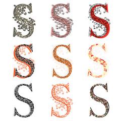 Various combination fishnet letter S.