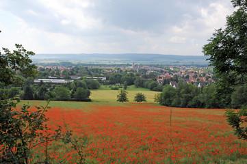 Panoramablick über Stadt Einbeck