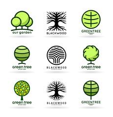 Set of trees (7)