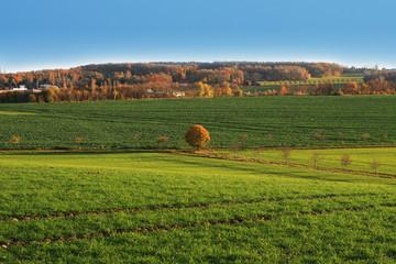 Landschaft - Thüringen im Herbst
