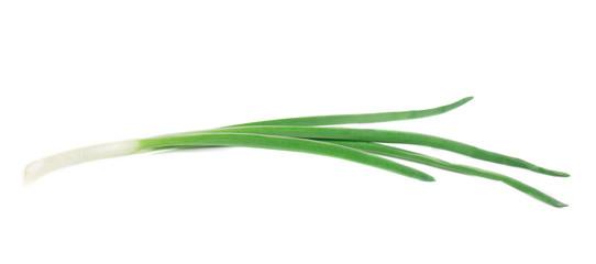 Beautiful spring onion.
