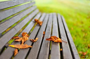 Sitzbank im Freien im Herbst