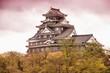 Okayama, Japan. Filtered color tone.