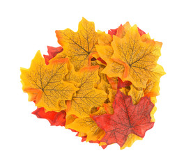 Group of artificial fall leaves on a white background.