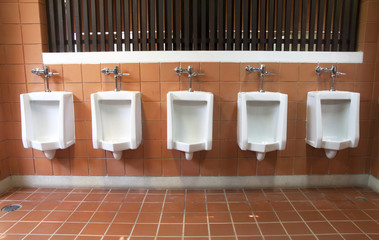 Men's room urinals