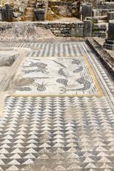 Mozaiekvloer  in Volubillis, Marokko