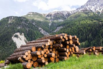 Alpen in Sins