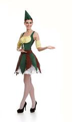 Beautiful girl dressed as an elf. A fabulous hero