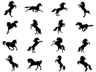 Silhouettes of animals (vector horses clipart ) 16