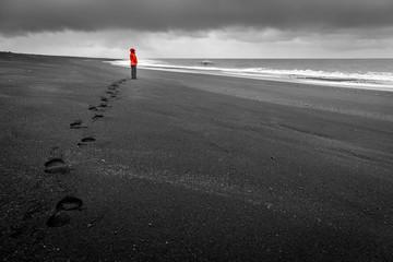 Islandic coast