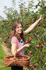 jeune femme qui cueille une pomme