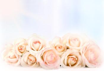 Rose con sfondo