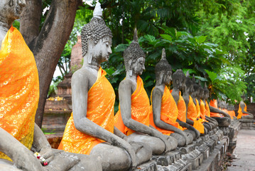 Row of Buddha