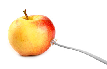 Apple with a connector