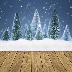 Winterlandschaft / Weihnachten