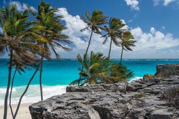 Barbados - Bottom Bay, east coast of the island