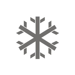 Icono nieve FB