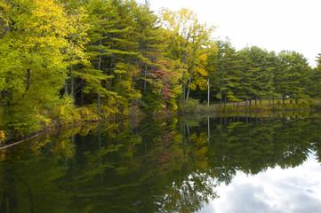Lake reflection, Vermont USA