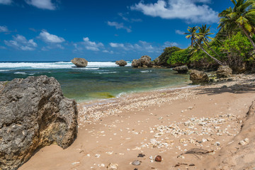 Barbados - Bathsheba beach on the east coast