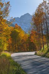 Road To Aspen Colorado in the Autumn