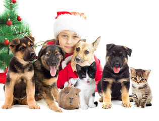kid in Santa hat with set of pets