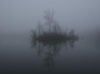 Mist on a lake at dawn