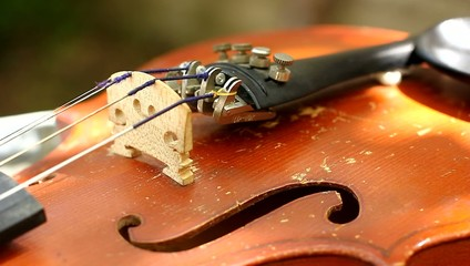 details of an old violin