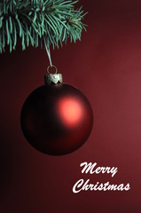 Merry Christmas, red ball on a tree branch
