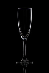 Champagne glass on black