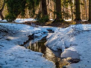 Wildbach fließt durch Schnee und Wald