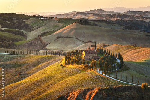 Cypress Tuscany in the beautiful landscapes of the setting sun. - 72957333