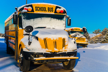 Winter Schoolbuses