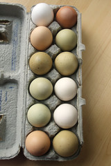 Organic colorful fresh eggs