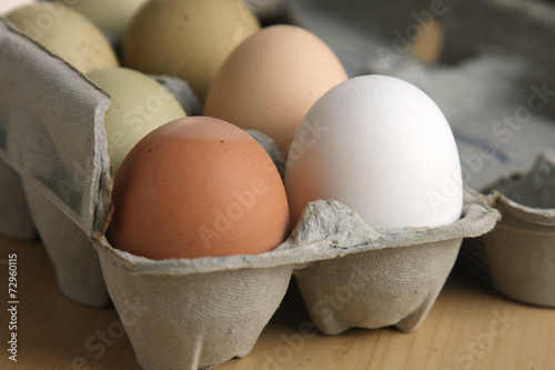 Plexiglas Egg Farm Fresh Eggs in Carton