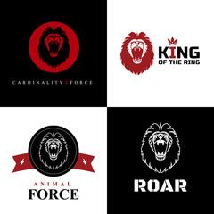 Lion Logo Graphic Designs