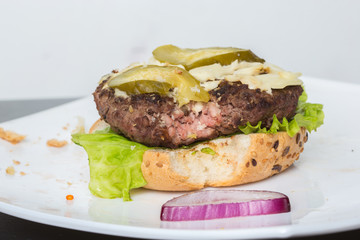 spoiled tasteless burger with roasted not Cutlets,