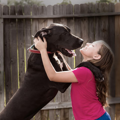great dane stand up on kid girl shoulders playing