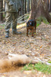 hunting dog with hunter in forest - 72969789