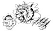 Lion clawing through wall - 72971138