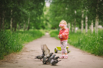 the little girl feeds pigeons 2