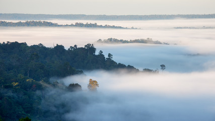 Aerial view of fog over hill of north Thailand