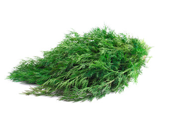 Bunch of fresh dill.
