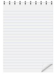 Notebook. Paper. Line