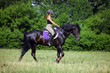 Young beautiful girl on horse walk