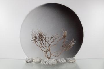 Stillleben mit Zweigen, Steinen und Kreis