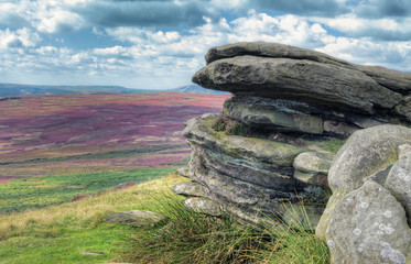 Colourful view over moorlands