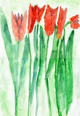 Child Drawing of Red Tulip Flowers, Watercolor
