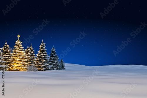 Leinwandbild Motiv Schneelandschaft mit Weihnachtsbaum